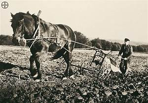 """Bayer AG on Twitter: """"A farmer in 1900 produced enough ..."""