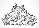 Ants Ameisenhaufen Ant Forest Outline Anthill Drawing Vektorzeichnung Ameisen Taxonomic Rank Concept Cartoon Illustrationen Leg Clip Vektoren sketch template