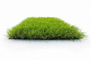 Pelouse Synthétique Castorama : fausse pelouse castorama carrelage terrasse gris x cm ~ Edinachiropracticcenter.com Idées de Décoration