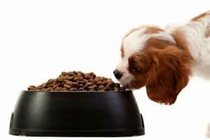 benefits of high fiber dog foods With akc dog food