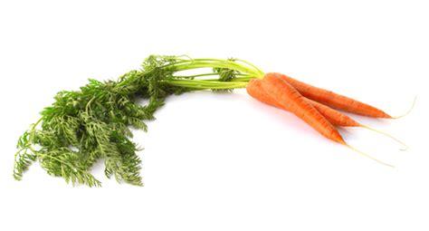 cuisiner les fanes de carottes astuce du chef cyril lignac comment cuisiner les