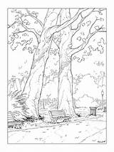 Bench Park Drawing Getdrawings Coloring Pages sketch template