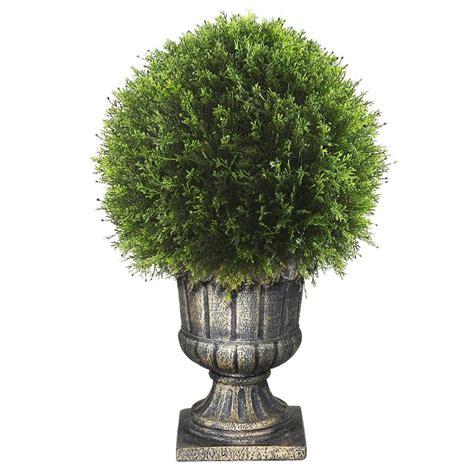 National Tree Company 27 In Upright Juniper Ball Topiary