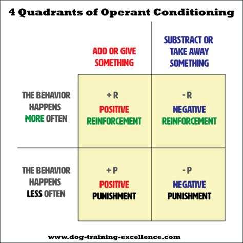 operant conditioning  positive  negative dog