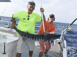 The Wahoo Bite
