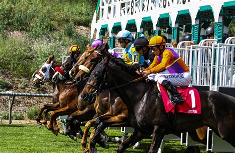 santa park live racing at santa park