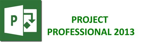 project professional  world wide game studio world