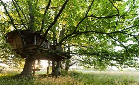 chambre hote quiberon cabane dans les arbres bretagne cabane perchée morbihan