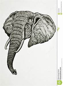 Elephant head portrait stock illustration. Illustration of ...
