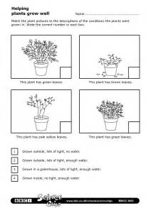 Plants Worksheets Schools Science Helping Plants Grow Well Worksheet