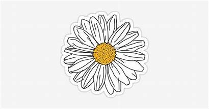 Printable Stickers Trendy Daisy Aesthetic Yellow Nicepng