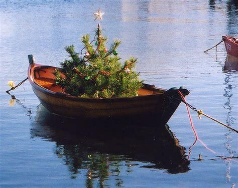 potted mini christmas trees   nautical  beach