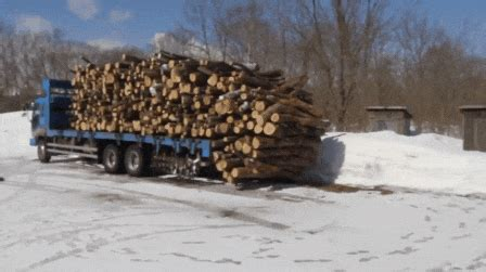firewood gifs find share  giphy
