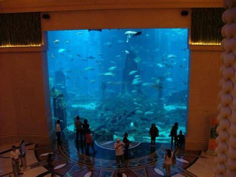 hotel atlantis dubai chambre aquarium