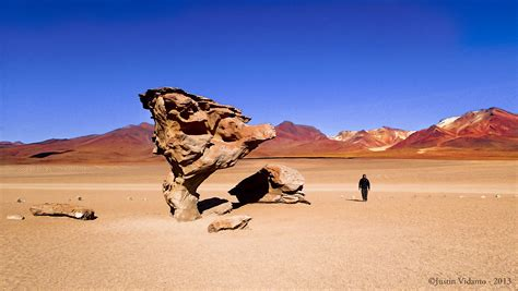 File:Árbol de Piedra - Reserva Nacional de Fauna Andina ...