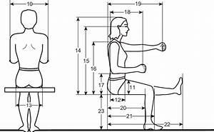 The Illustration Of The Corresponding Anthropometric