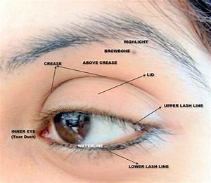 Full Eye Map