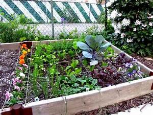 Faire Un Petit Potager En Carré : que planter dans un petit potager ~ Melissatoandfro.com Idées de Décoration