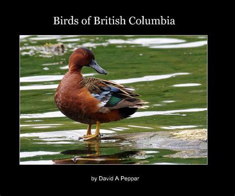 birds of british columbia by david a peppar blurb books