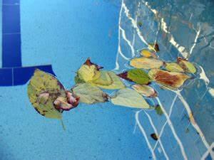 Hivernage Bassin Exterieur : l 39 hivernage actif pour la piscine astuces et conseils ~ Premium-room.com Idées de Décoration