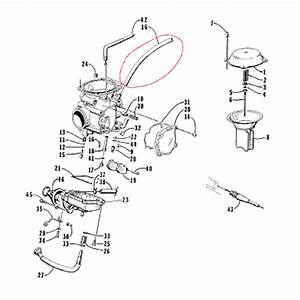 Arctic Cat Bearcat 454 Wiring Diagram  Arctic  Free Engine