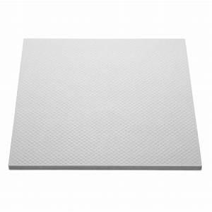 Plaque De Plexiglas Castorama : dalle t 141 50 x 50 cm leroy merlin ~ Dailycaller-alerts.com Idées de Décoration