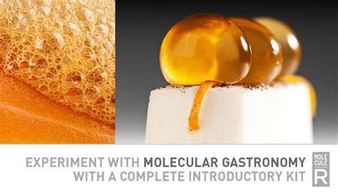 molecular gastronomy kit cuisine diy molecular gastronomy kits