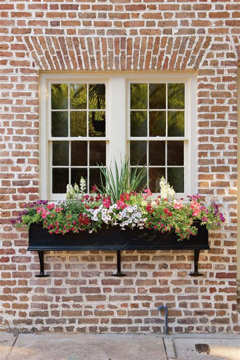 Window Garden Plants by 11 Window Box Ideas And Flowers To Plant This Season