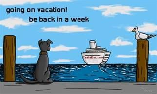 vacation time tesla bet