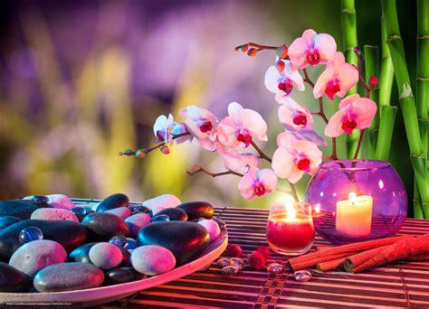bureau fr tlcharger fond d 39 ecran noyaux bougies orchidées bambou
