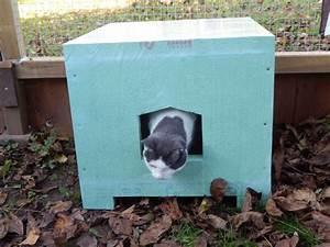 Heizung Für Hundehütte : katzenhaus f r den winter selber bauen katzenhaus aus einem alten karton basteln u design dots ~ Frokenaadalensverden.com Haus und Dekorationen