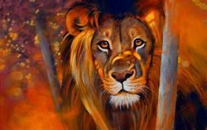 Lion - Animals Wallpaper (33624606) - Fanpop