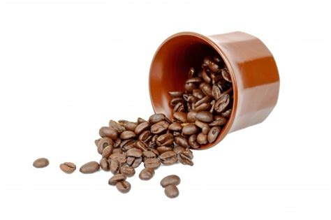 Coffee made from date palm seeds is traced back through the centuries to the saharan desert and middle eastern cultures. Free Photo   Coffee seeds