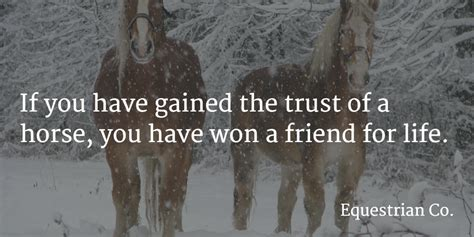 inspirational equestrian quotes