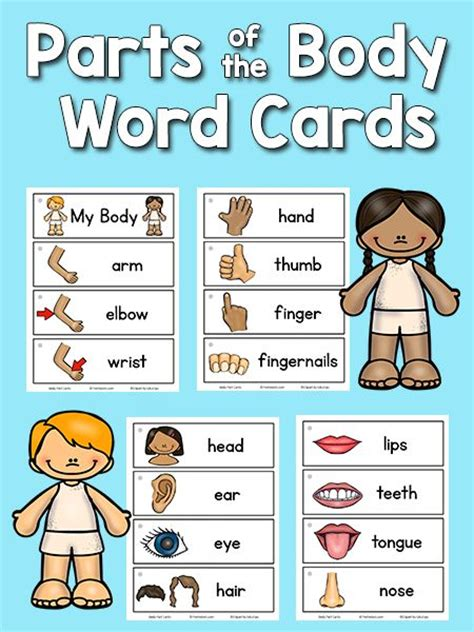368 best images about quot all about me quot theme on 805 | 58f18f6e5c1f58a851b5b3de8cb12e97 literacy centers kindergarten free parts of the body kindergarten