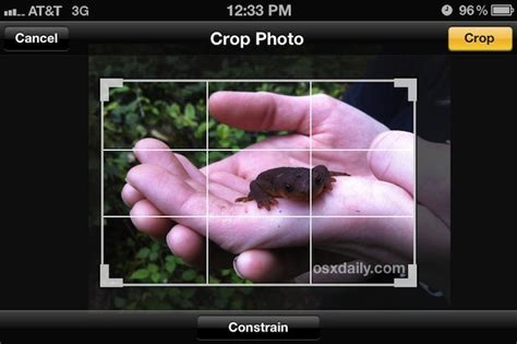 how to crop a on iphone crop images on iphone easily with photos app