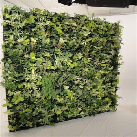 mur vegetal interieur pas cher mur vegetal interieur pas cher 28 images sup rieure cadre vegetal pas cher 11 cadre orchid e