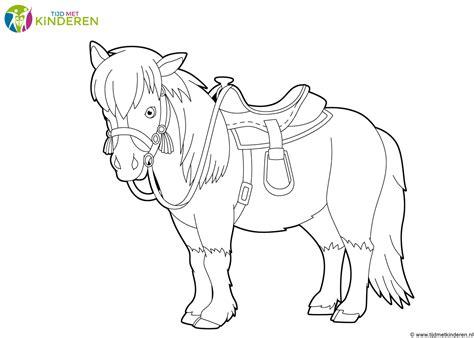 Kleurplaat Paard En Wagen by Genoeg Paard Tekenen Ghp52 Agneswamu
