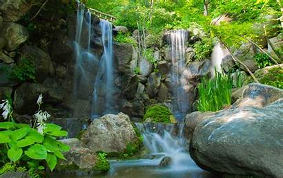 Waterfall River Nature Rocks Trees Plants Wallpapers