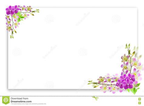 beau cadre de fleur d orchid 233 e sur le blanc avec l endroit vide pour le texte photo stock