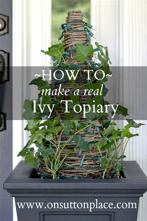 How To Make A Real Ivy Topiary  On Sutton Place