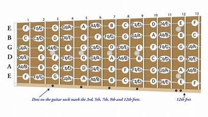 Guitar Notes Names Beginners Diagram Note Fingerboard