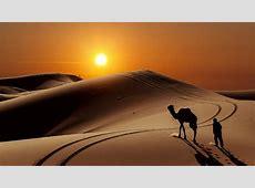Desert In The Sunset Wallpaper Wallpaper Studio 10