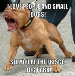 Small Funny Dog Memes