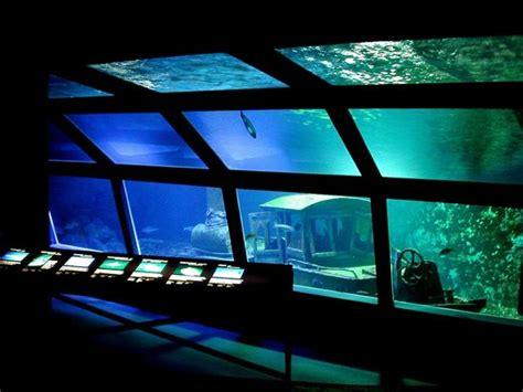 chambres d hotes reunion aquarium de la réunion gilles les bains 2018