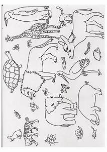 Therapiematerial Logopdie Wimmelbild Tiere