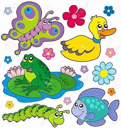 Pond Animals Clipart Garden Creatures Illustration Clip
