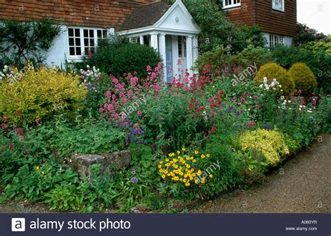 Pink Phlox In And Small Shrubs In Cottage Garden Border In