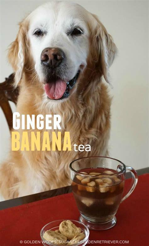 ginger banana tea   dog   love recipes