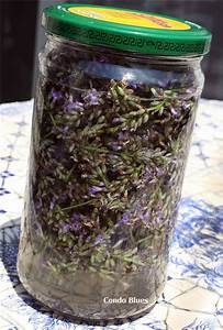 herbal tincture recipes